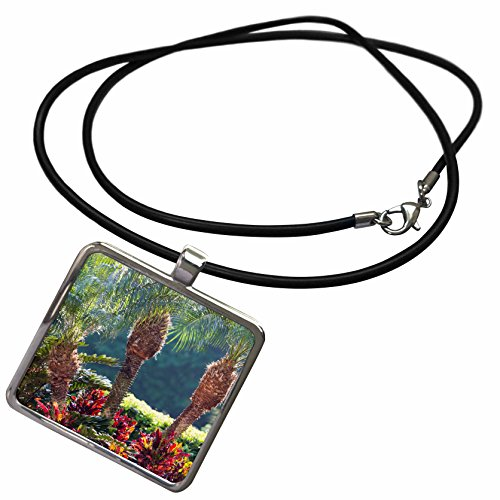 3dRose Danita Delimont - Gardens - USA, Florida, Celebration, Palm Trees - Necklace With Rectangle Pendant (ncl_278853_1) ()