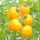 yellow cherry tomato seeds - Brand New! Rare Yellow Pearl Tomato Seeds 30pcs/bag Dwarf Tomatoes Cherry Mini Tomato Bonsai Seeds Vegetable for Garden Plant