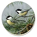 CounterArt Beautiful Songbirds Chickadees Absorbent Coasters, Set of 4