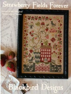 Strawberry Fields Forever Cross Stitch Chart (Cross Stitch Charts)
