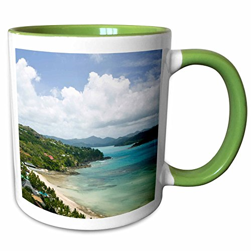 3dRose Danita Delimont - Coastlines - Australia, Whitsunday, Hamilton Island coastline-AU01 WBI0551 - Walter Bibikow - 11oz Two-Tone Green Mug (mug_71265_7) - Hamilton Island Light