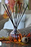 24 Hour Sale    Manu Home pumpkin reed diffuser set   6.5 ounce fill    Nostalgic scent crafted with aromatherapy oils and real pumpkin extract. Made in
