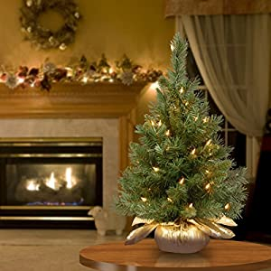 National Tree 24 Inch Majestic Fir Tree with 35 Clear Lights in Gold Cloth Bag (MJ3-24GDLO-1) 2