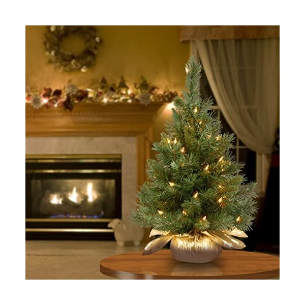 National-Tree-24-Inch-Majestic-Fir-Tree-with-35-Clear-Lights-in-Gold-Cloth-Bag-MJ3-24GDLO-1