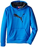 PUMA Boys' Big Cat Hoodie (Little Kid/Big Kid), Sky Blue, X-Large