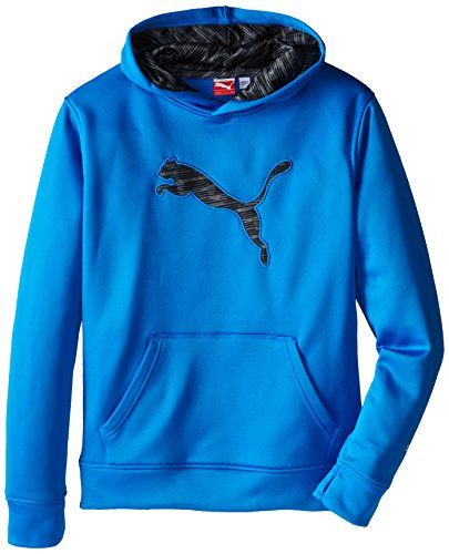 PUMA Boys' Big Cat Hoodie (Little Kid/Big Kid), Sky Blue, Medium