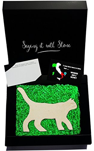 Made in Italy by hand - Walking Cat - Lovers Gift - Elegant gift box & message card included - Ancient Italian stone containing fossil fragments - cat presents for mom her girls vet wife birthday dad