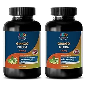 brain booster now – GINKGO BILOBA 120MG – wellness formula supplement – 2 Bottles…