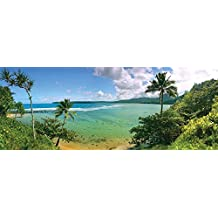 J.P. London MD3033PS Peel and Stick Paradise Tropical Beach Panoramic Fully Removable Wall Mural, 4-Feet by 10.5-Feet