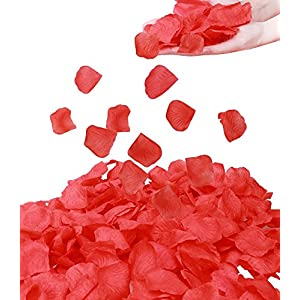 Simplicity 1000 Pcs Rose Petals Wedding, Anniversary, Party Decoration,Red 100