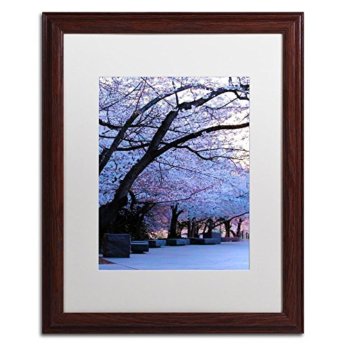 Global Shade Wood (Trademark Fine Art Cherry Blossom Shade by CATeyes, White Matte, Wood Frame 16x20-Inch)