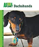 Dachshunds, Sheila Webster Boneham, 0793837855