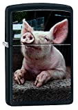 Zippo Pig Dreaming Pocket Lighter, black Matte