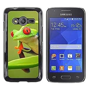 FECELL CITY // Duro Aluminio Pegatina PC Caso decorativo Funda Carcasa de Protección para Samsung Galaxy Ace 4 G313 SM-G313F // Frog Green Orange Tropical Summer