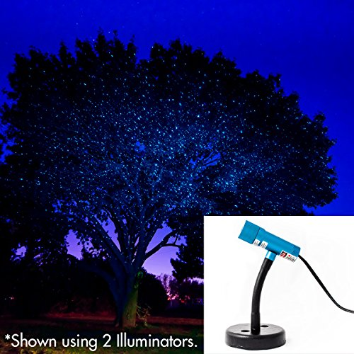 Twilight Brand Landscape Lighting in US - 6