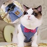 Stock Show - Juego de chalecos de senderismo para gatos y perros, arnés para gatos y correa a juego con lazo bonito, correa desmontable, arnés de estilo británico para cachorros medianos perros gatos, azul Denim, S