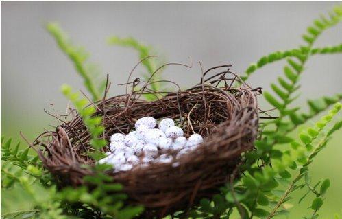 1pc Resin Craft Mini bird nest Fairy Garden Miniature Decor Micro Landscape  IF