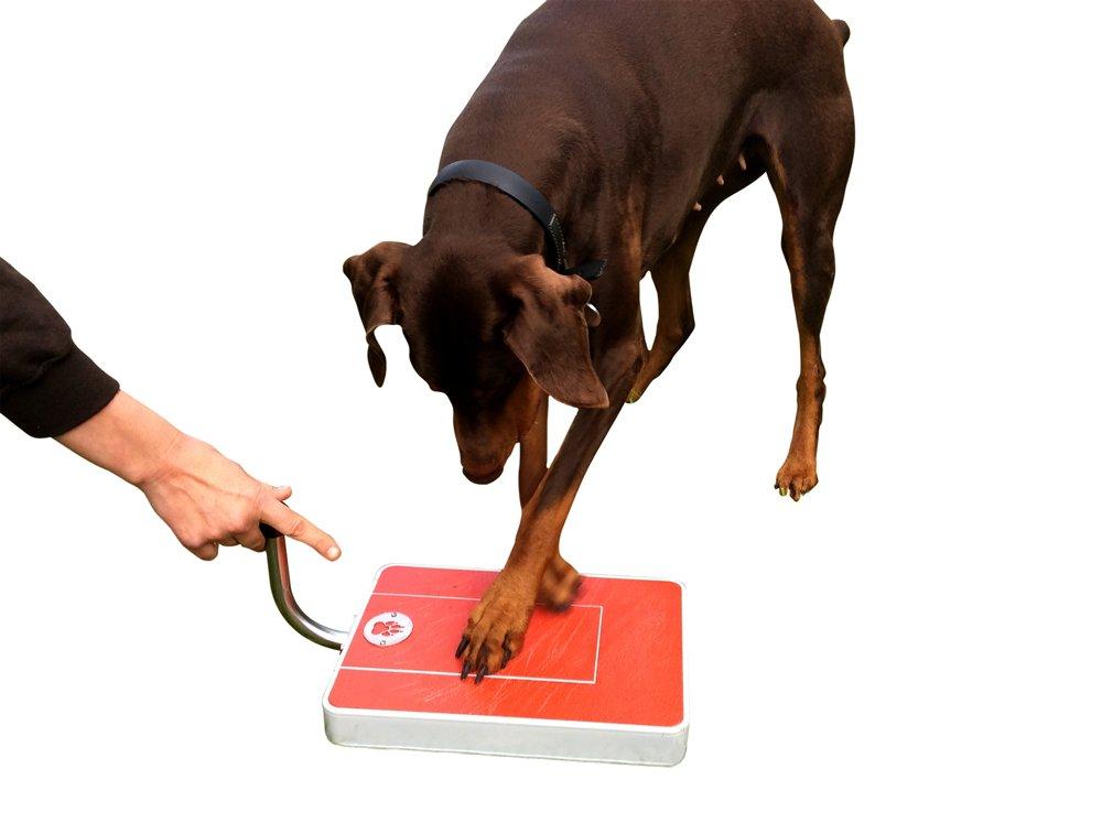 Digger Dog Nail File Stress Free Alternative to Dog Nail Clippers and Dog Nail Grinders (Red)
