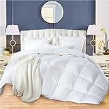 Winter Duvet Down Comforter Goose Queen/Full Duvet Insert Down Comforter Winter Blanket Down Comforter 100% Egyptian Cotton Cover White Comforters Hypoallergenic White 800FP 600TC