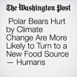 Polar Bears Hurt by Climate Change Are More Likely to Turn to a New Food Source — Humans | Cleve R. Wootson Jr.
