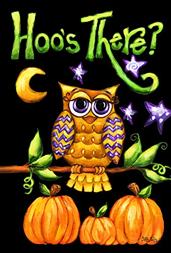 (Toland Home Garden Hoo's There 28 x 40 Inch Decorative Fall Autumn Owl Bird Pumpkin Halloween House Flag)