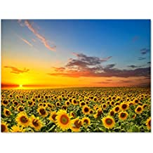Oversized Golden Sunflowers Garden Scenery Xlarge Modern Giclee Prints Artwork Landscape Pictures Paintings on Canvas Wall Art for Living Room Decor (36x48inch No Frame(only Canvas))