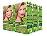 Naturtint Permanent Hair Color - 9.31 Sandy Blonde, 5.28 fl oz (6-pack)
