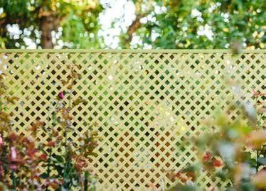 Celosia PVC 48 Mm 1x2 Caña: Amazon.es: Jardín