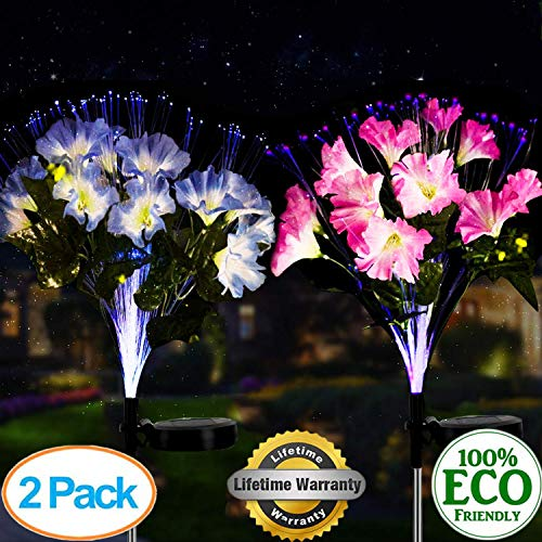 (WELIGHT Solar Ground Lights,Solar Flower Garden Lights Outdoor Waterproof with 8 LED for Driveway, Deck, Garden, Solar Garden Stake Lights (Morning Glory(2 Pack)))
