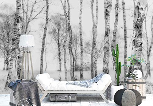 Photo wallpaper wall mural - Birch Tree Trunks Woodland - Theme Forest & Trees - XL - 12ft x 8ft 4in (WxH) - 4 Pieces - Printed on 130gsm Non-Woven Paper - 1X-1211795V8 (Bark Wallpaper)