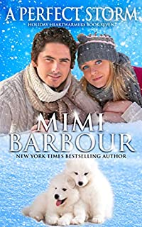 A Perfect Storm by Mimi Barbour ebook deal