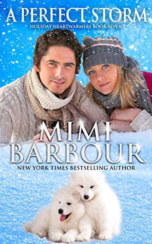 A Perfect Storm (Holiday Heartwarmers Book 6) by [Barbour, Mimi]