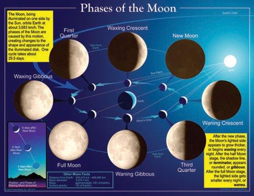 Carson Dellosa Mark Twain Phases of The Moon Chart (5858) -