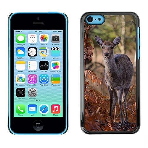 Premio Sottile Slim Cassa Custodia Case Cover Shell // F00012148 cerf // Apple iPhone 5C