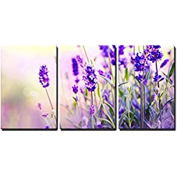 "wall26 3 Piece Canvas Wall Art - Lavender Field - Modern Home Decor Stretched and Framed Ready to Hang - 16""x24""x3 Panels"
