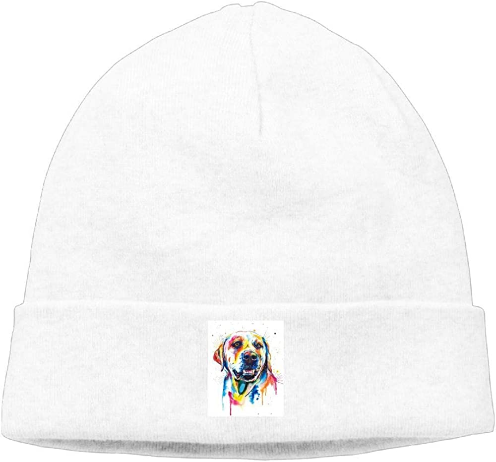 nordic runes Lovely Labrador Retriever Dog Beanie Hat Winter Warm Knit Skull Cap for Mens//Womens