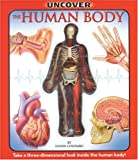 img - for Uncover the Human Body: An Uncover It Book book / textbook / text book