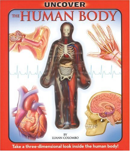 Uncover the Human Body: An Uncover It Book by Transition Vendor