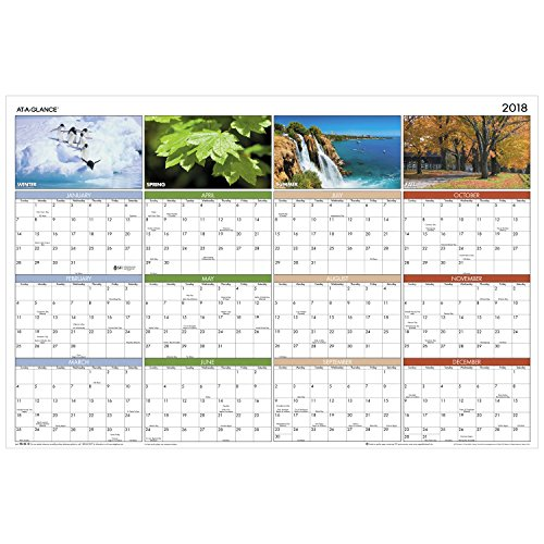 "AT-A-GLANCE Yearly Wall Calendar, 36"" x 24"", Horizontal, Vertical, Erasable, Seasons in Bloom (PA133)"