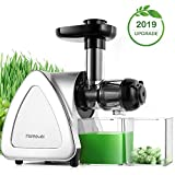 Best Masticating Juicers - Juicer Machines, Homever Slow Masticating Juicer Extractor Easy Review