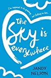 download ebook the sky is everywhere by jandy nelson (2015-02-05) pdf epub