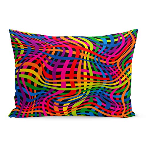 Semtomn Throw Pillow Covers Rainbow Colorful Striped Skin Abstract Animal Camouflage Zebra Pillow Case Cushion Cover Lumbar Pillowcase Decoration for Couch Sofa Bedding Car 20 x 36 inchs ()