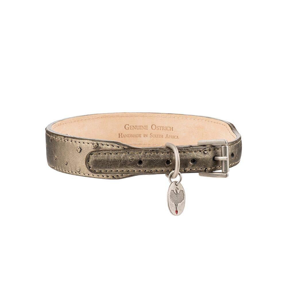 HaberHauer Collection Ostrich Leather Designer Dog Collar, XLarge 23-26 inch. - Olive Metallic