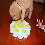 N / A Dog Interactive Toys, Pet Puzzle Toys, Pet