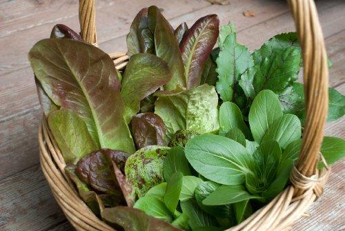 Bestselling Vegetables