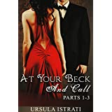 At Your Beck And Call: Parts 1-3 (Billionaire / Alpha / Light BDSM)