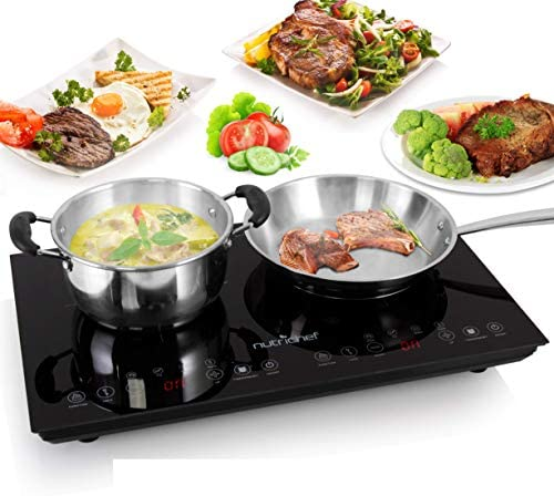 Double Induction Cooktop - Portable 120V