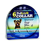 PetLock 6 Month Flea and Tick Collar for SMALL DOGS and puppies 12 weeks of age and older