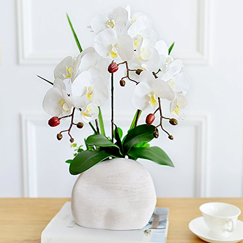 GBHNJ False White Butterfly Orchid Decoration Vase Artificial Fg