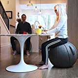 Vivora Luno Exercise Ball for Home, Office, Yoga, Stability and Fitness, Sitting Ball with Handle - Clay